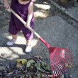 Stock Photo: Little girl raking leaves