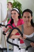 Women in fitness club — Stock fotografie