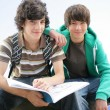 Stock Photo: Teens studying