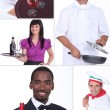 Catering professionals — Stock Photo #8536040