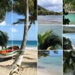 Tropical Island — Foto de stock #8536045