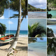 Foto Stock: Tropical Island