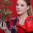 Lovely blonde watering plant against red background — Stock Photo #8536549