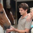 Two teenagers stood by horse stable - Stock Photo