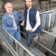 Two men in wine factory — Stockfoto