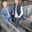 Two men in wine factory — Stock Photo