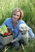 Woman with dog and basket of vegetables — Stock Photo