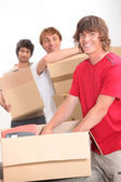 Trio of flat mates moving in together — Stock Photo