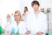 Young woman and young man in a laboratory — Stock Photo