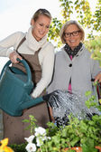 Grandmother and lovely blonde watering plants outdoors — Stockfoto