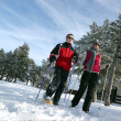 Couple going skiing — Stock Photo #8541813