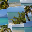 Foto de Stock  : Tropical Island