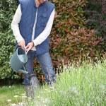 giovane uomo innaffiare le piante — Foto Stock