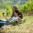 Couple tasting wine at a vineyard - Stockfoto