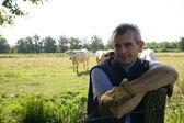 Agricultor em um campo do gado — Fotografia Stock