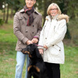 Mature couple walking in a park with their dog - Stok fotoğraf