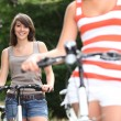 Stock Photo: Young women riding bikes