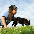 Little girl with a dog — Stock Photo #8584399