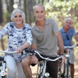 Mature couples on a double date biking. — Stock Photo