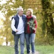 Couple enjoying romantic walk — Stock Photo #8653438