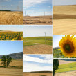 Collage of landscapes — Stock Photo #8654600