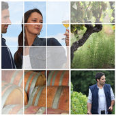 桶、 藤茎和葡萄酒制造商 — 图库照片