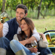 Couple enjoying a bottle of wine whilst harvesting grapes — Stock Photo #8664547