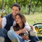 Couple enjoying a bottle of wine whilst harvesting grapes — Stock Photo #8664547