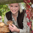 Mushroom picking - Stock Photo