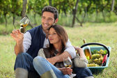 Couple enjoying a bottle of wine whilst harvesting grapes — Stock Photo