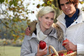 Happy couple in the park gathering apples — Stock Photo