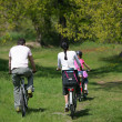 Family bike ride — Stockfoto
