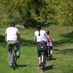 Aile Bisiklete binmek — Stok fotoğraf