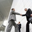 Businessmen shaking hands outside — Stock Photo #8693091