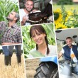 Young farmers — Stock Photo #8752564