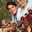 Couple gathering mushrooms in basket — Stock Photo #8753370