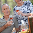 Older couple drinking rose wine with a picnic - Stock Photo