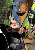 Collage of wine images and terroir — Stock Photo