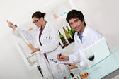 Female and male wine laboratory technicians — Stock Photo
