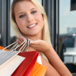 Blonde womdoing shopping — Stock Photo #8775208