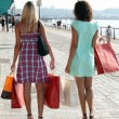 Two young women holding carton bags and walking on a wharf - Stok fotoraf