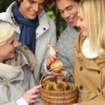Two couples gathered around basket of mushrooms — Stock Photo