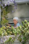 Old lady looking after the plants on her balcony — Stock Photo