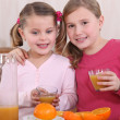 Stock Photo: Little girls squeezing oranges