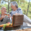 Stock Photo: Couple enjoying picnic together