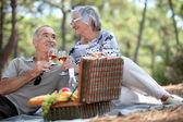 Couple enjoying a picnic together — Stock Photo