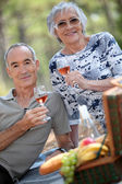 Older couple drinking rose wine with a picnic — Stock Photo