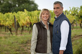 Couple in a vineyard — Stock Photo
