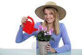 Young woman watering a potted plant — Stock Photo