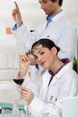 Oenologists analysing a wine — Stock Photo